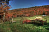 Sullivan County, PA Autumn :